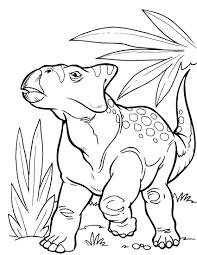 dinosaur 5 coloringcolor com
