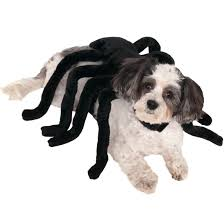 Extra Large Dog Halloween Costumes Buy Funny Dog Costumes Cute Puppy Costumes Guaranteed
