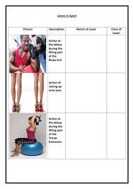 lever worksheet aqa gcse pe 1 9 by pottsfly teaching resources