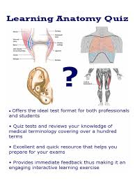Human Ear Anatomy Quiz Learning Anatomy Quiz Android Apps On Google Play