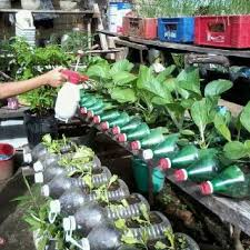 10 best recycled container garden images on pinterest brittany