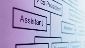what is the purpose of an organization chart reference com