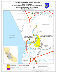 Google Maps Directions Link Moss Landing Wildlife Area We U0027ve Moved To Www Legallabrador Org