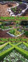 Companion Vegetable Garden Layout by Vegetable Garden Planning Designing And Growing Quiet Corner