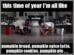 Generate All The Memes - this time of year i m all like pumpkin bread pumpkin spice latte