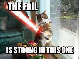 The Force Is Strong With This One Meme - the fail is strong in this one cat macros
