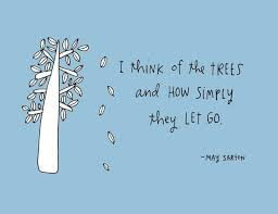 best tree quotes and pictures sayings proverbs 2015