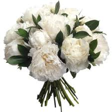 peonies flower delivery flower delivery bilbao budget