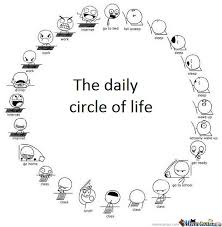 Meme Daily - the daily circle of life by kaxpa meme center