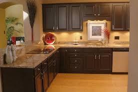 Light Brown Kitchen Cabinets Brown Painted Kitchen Cabinets Gen4congress Com