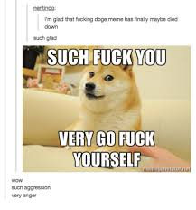 Such Doge Meme - nentindo i m glad that fucking doge meme has finally maybe died down