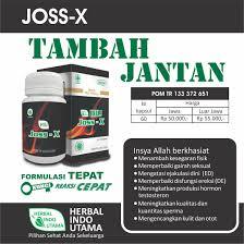 obat herbal stamina pria tahan lama herbal indo utama jossx cara
