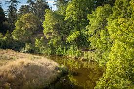 Kyneton Botanical Gardens Stunning Riverside Botanic Gardens Ideas Garden Design And