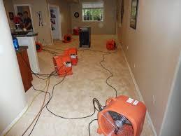 case studies water damage mold mitigation radon denver co