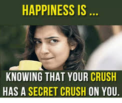 Secret Crush Meme - happiness is knowing that your crush has a secret crush on you