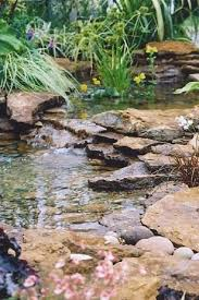 gorgeous garden pond ideas gardening viral