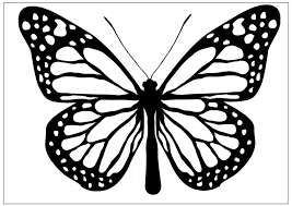 black and white butterfly clip art library