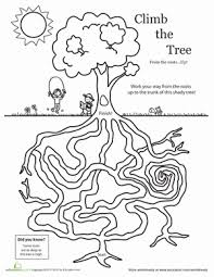 amazing tree maze worksheet education