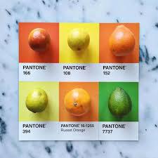 188 best pantone images on pinterest colors color palettes and