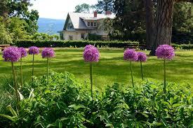 explore the summerland ornamental gardens