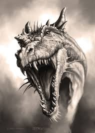 51 best dragons images on pinterest drawings baby dragon