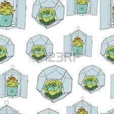 resume modernos terrarios suculentas conjunto de cuatro plantas suculentas verdes en el interior del