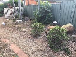 large river stone rocks landscaping u0026 gardening gumtree