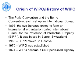 wipo international bureau consultant wipo worldwide academy ppt