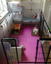 indoor rabbit cage enclosure bunnies pinterest indoor rabbit