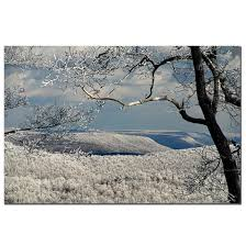 Winter Scene Shower Curtain by Lois Bryan U0027winter Scene U0027 Canvas Wall Art Free Shipping Today