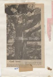 Cool Tree by Greynolds Park Flashback Miami