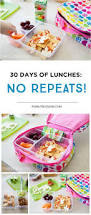 384 best lunch for kids toddler lunches lunches images