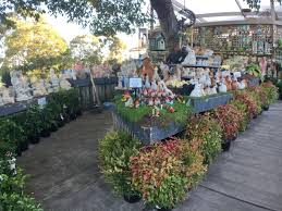 native plants nursery melbourne best plant nurseries melbourne wholesale u0026 retail nursery