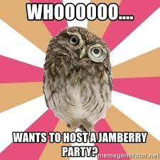 Owl Birthday Meme - owl birthday meme owl puns kappit scumbag owl meme memes owl and meme