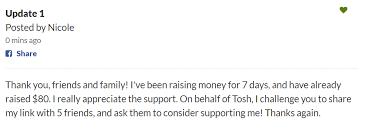 6 steps to a successful campaign u2013 gofundme help center
