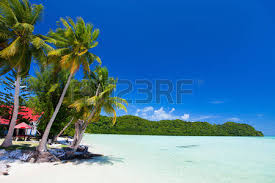 beautiful tropical with palm trees white sand turquoise