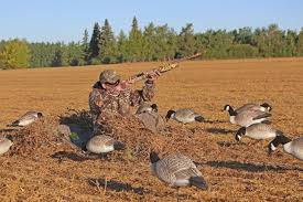 Layout Blinds Reviews New Duck And Goose Blinds For 2014 Realtree