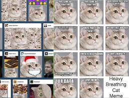 Cat Heavy Breathing Meme - heavy breathing cat meme poc
