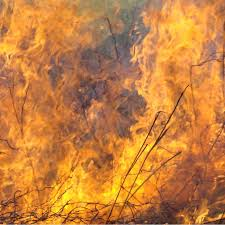 Arkansas National Parks images Wildland fire in arkansas 39 national parks u s national park service jpg