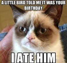Quick Memes - the top 10 best grumpy cat memes