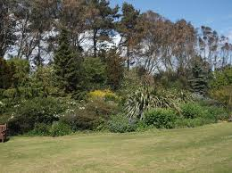 Barnhill Rock Garden Perimeter Picture Of Barnhill Rock Garden Dundee Tripadvisor