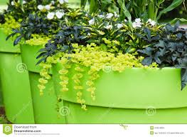 garden design garden design with super large big plastic plant