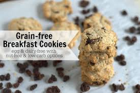 49 paleo christmas cookie recipes eatfit cooking