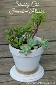 shabby chic succulent planter this mama loves