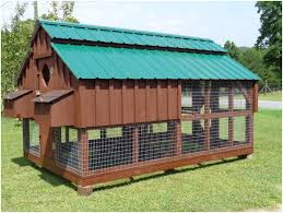 Easy Backyard Chicken Coop Plans by Backyards Fascinating Backyard Chicken Coops Designs Backyard