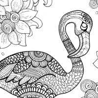 free flamingo coloring page for adults flamingo free printable