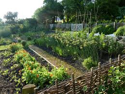 Kitchen Garden Designs 1092 Best Vegetable Garden Images On Pinterest Gardening Veggie