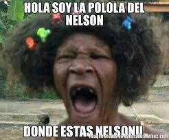 Meme Nelson - hola soy la polola del nelson donde estas nelson meme de qye