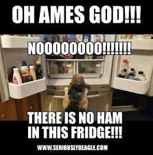 Fridge Meme - memes page 3 seriously beagle