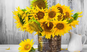 sunflower bouquets sunflower arrangements for a vase or bouquets smart tips